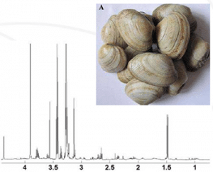 representative one-dimensional 1H NMR spectrum of gill tissue extracts from Manila clam.