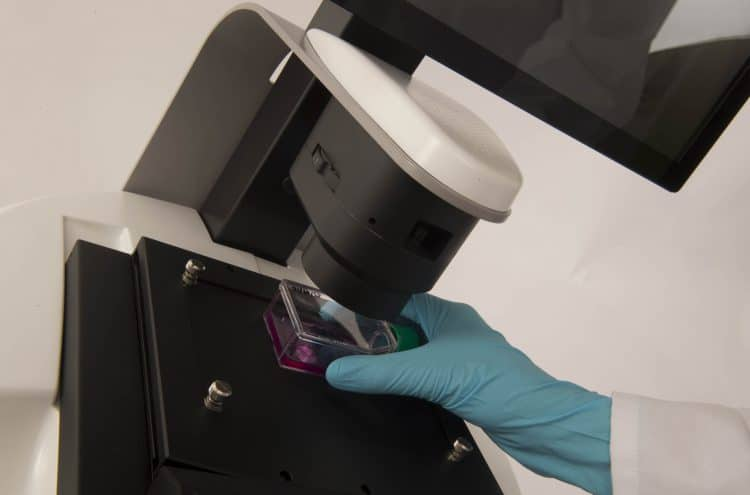 InCellis cell imager designed for cell culture confluency