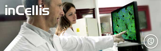InCellis, the most sensitive cell imaging system to monitor your cell culture