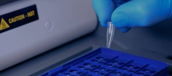 Optimize your PCR workflows with homogenization protocols